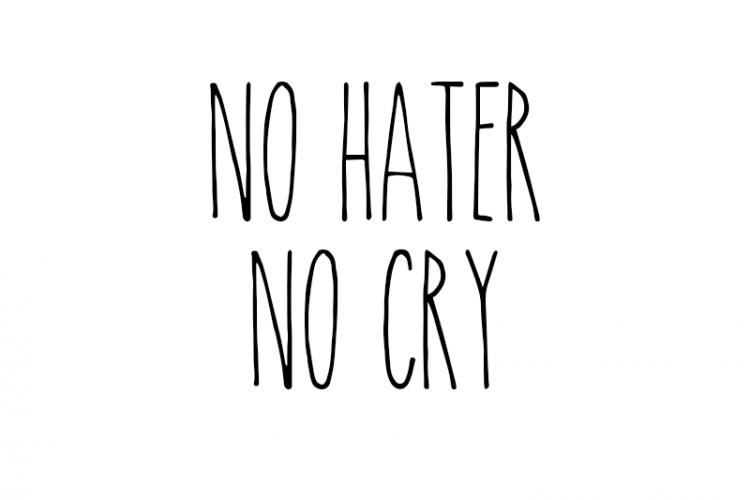"""Quando incontriamo un """"hater"""" sui social"""